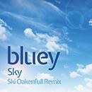 BLUEY「Sky - EP」