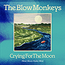 THE BLOW MONKEYS「Crying For The Moon (New Moon Radio Mix)」