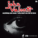 JOHN VALENTI「Anything You Want / Why Don't We Fall In Love」
