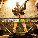 JOE LOUIS WALKER「Hornet's Nest」