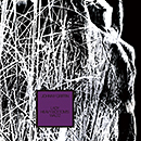 JOHNNY GRIFFIN「Lady Heavy Bottom's Waltz」