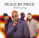 PEACE BY PIECE「It's Been So Long」