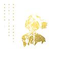 Nanaco + Riki Hidaka「Golden Remedy」