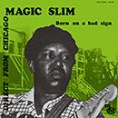 MAGIC SLIM「Born On A Bad Sign」