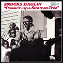 SNOOKS EAGLIN「Possum Up A Simmon Tree」