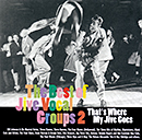 V.A.「That's Where My Jive Goes - The Best of Jive Vocal Groups 2」