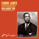 ELMORE JAMES「Wild About You - The Complete Meteor/Flair/Modern Singles」