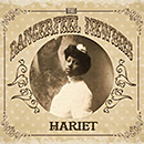 The DangerFeel Newbies「Hariet」