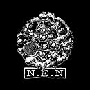 N.E.N「N.E.N」