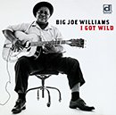 BIG JOE WILLIAMS「I Got Wild」