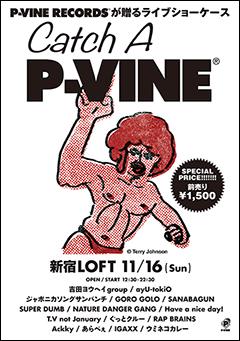 P-VINEが贈るライブショーケース・イベント『Catch A P-VINE』(11/16 新宿ロフトにて開催!)の特設ページがオープン!
