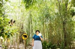 南海サックス人情派、浦朋恵、7.2発売のニュー・アルバム『ナツメヤシの指』のカバー・アートと最新アーティスト写真をドドンと公開!