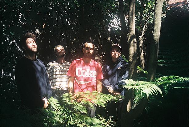 南国のプールサイドでまどろんでいるような楽園インディ・ポップが日本独自CD化!南米ブエノスアイレス発、イスラ・デ・カラスの大傑作が本日リリース!