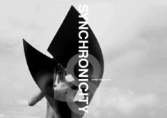 NAOITO出演、未来へ繋ぐ出会いと感動のフェスティバル 『SYNCHRONICITY'10 AUTUMN』開催決定!