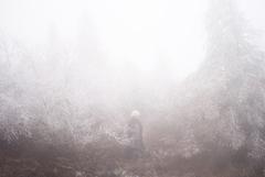 石橋英子、待望のニューアルバム『carapace』発売決定!そして、盟友七尾旅人とのスペシャル・リリースパーティも発表!