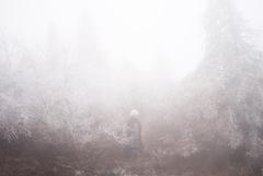 石橋英子、ジム・オルークプロデュースによるニューアルバム『carapace』発売に先駆けトークショー付き体感試聴会開催!!