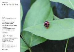6月4日(土)(ムシの日) に鈴木海花さんのイベント@ガケ書房