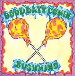 これが噂のB-Boy版サイケ・トリップミュージック。Bushmindの2ndアルバムが待望のアナログ化!!限定生産です!!