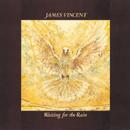 JAMES VINCENT「Waiting For The Rain」
