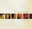 SOLOMON BURKE「Like A Fire」