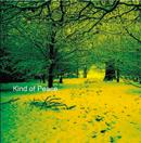 パット・ディー&レディー・パラドックス「Kind Of Peace」