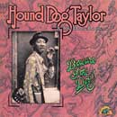 HOUND DOG TAYLOR「Beware Of The Dog」