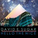 DAVID E. SUGAR「Hello The Nice」