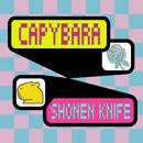 SHONEN KNIFE「カピバラ」