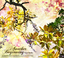 ANAN RYOKO「Another Beginning」
