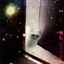 KATSUREI「星を見る」