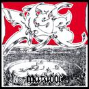 MSC「MATADOR」