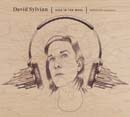 DAVID SYLVIAN「Died In The Wool - Manafon Variations」