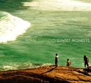 ADAM DUNNING「Sunset Monkeys」