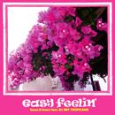 easy feelin'~beats & lovers- feat.DDT-Toropicana