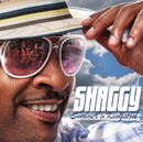 SHAGGY「Summer In Kingston」