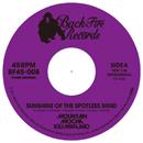 MOUNTAIN MOCHA KILIMANJARO「Sunshine of the Spotless Mind c/w K.I.T.T. - KNIGHT RIDER MAIN TITLE (DJ UPPERCUT REMIX)」