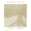 MARIO NEGRAO「Madeira em pe」