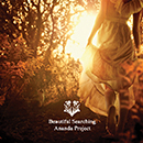 ANANDA PROJECT「Beautiful Searching」