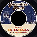 """V.A.「DJ SARASA Presents PARADISE FUNK """"Moon""""」"""