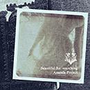 ANANDA PROJECT「Beautiful Re: searching」